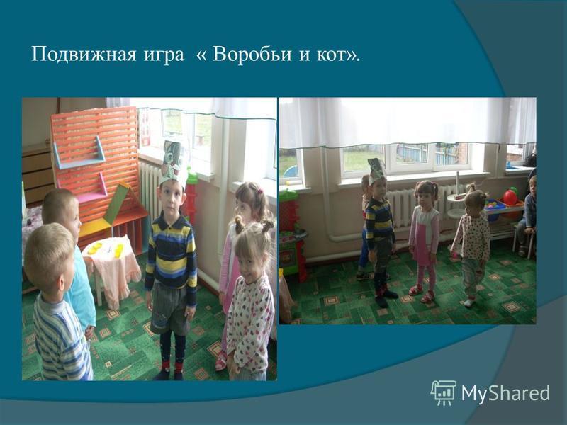Подвижная игра « Воробьи и кот».