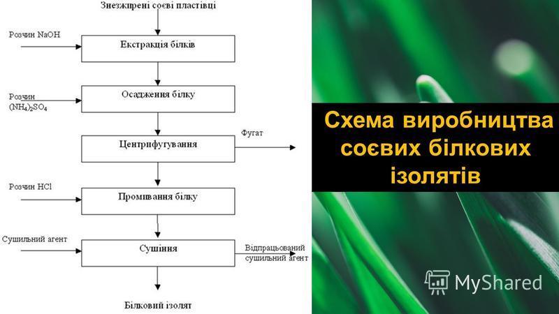 Схема виробництва соєвих білкових ізолятів