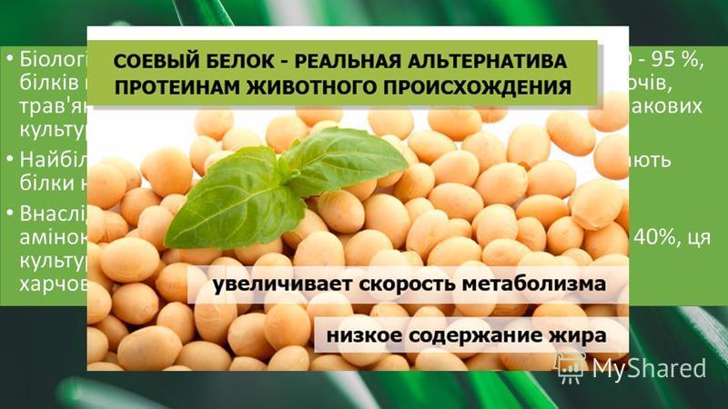 Біологічна цінність більшості тваринних білків становить 90 - 95 %, білків вегетативної маси бобових трав - 80 - 90 %, білків овочів, трав'янистих рослин, насіння олійних культур - 75 - 85 %, злакових культур - 60 - 70 %, кукурудза - 52 - 58 %. Найбі