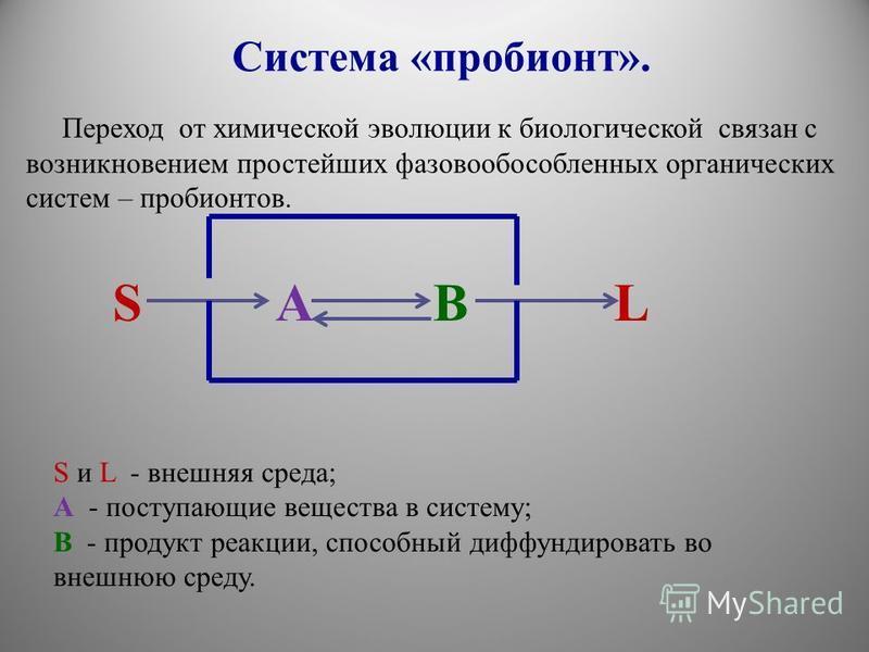 Переход от химической эволюции к биологической связан с возникновением простейших фазово обособленных органических систем – пробионтов. S A B L S и L - внешняя среда; А - поступающие вещества в систему; В - продукт реакции, способный диффундировать в