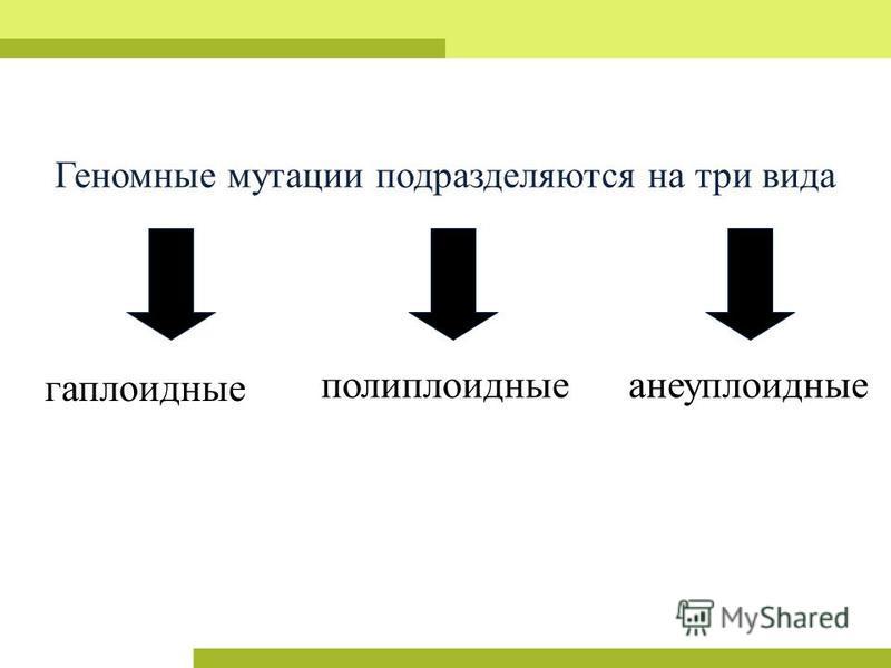 Геномные мутации подразделяются на три вида полиплоидныеанеуплоидные гаплоидные