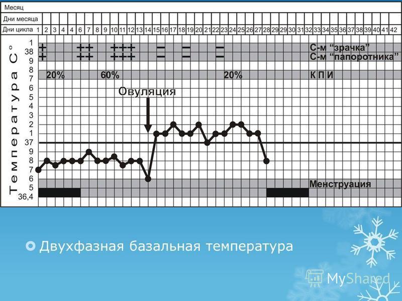 Двухфазная базальная температура