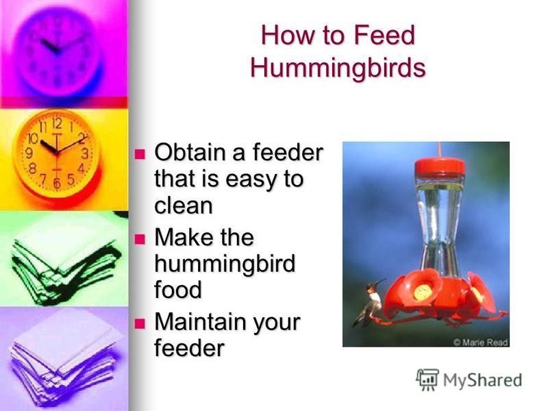 Hummingbirds Fastest recorded wing speed is 80 beats per second! Fastest recorded wing speed is 80 beats per second! Heart ratesfrom 50 to 1260 beats per minute Heart ratesfrom 50 to 1260 beats per minute Males leave before females for migration Male