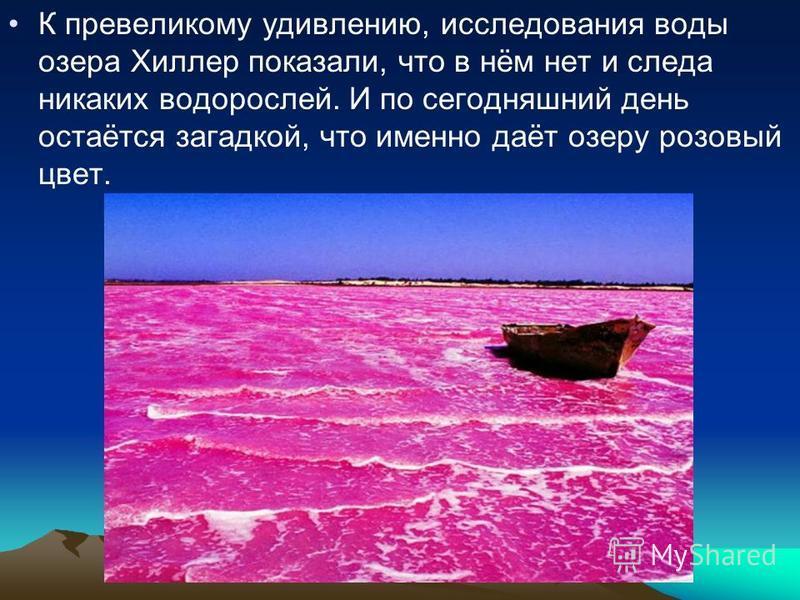К превеликому удивлению, исследования воды озера Хиллер показали, что в нём нет и следа никаких водорослей. И по сегодняшний день остаётся загадкой, что именно даёт озеру розовый цвет.