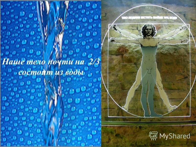 Наше тело почти на 2/3 состоит из воды