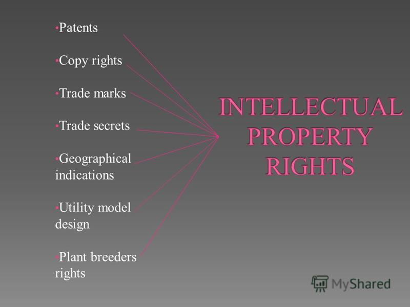 Patents Copy rights Trade marks Trade secrets Geographical indications Utility model design Plant breeders rights
