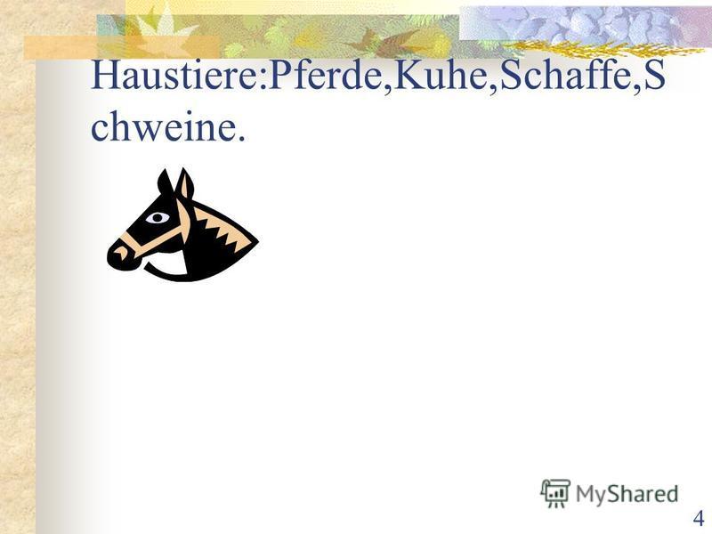 4 Haustiere:Pferde,Kuhe,Schaffe,S chweine.