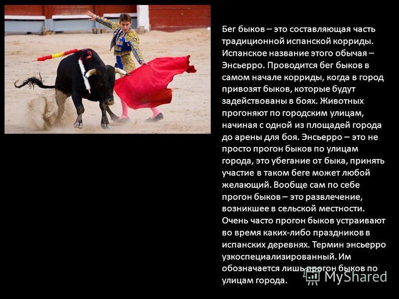 Бег быков – это составляющая часть традиционной испанской корриды. Испанское название этого обычая – Энсьерро. Проводится бег быков в самом начале корриды, когда в город привозят быков, которые будут задействованы в боях. Животных прогоняют по городс