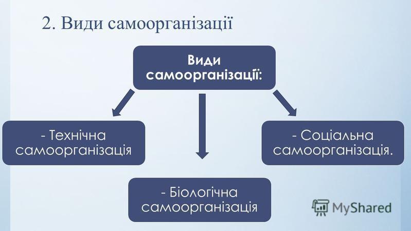 2. Види самоорганізації Види самоорганізації: - Технічна самоорганізація - Біологічна самоорганізація - Соціальна самоорганізація.