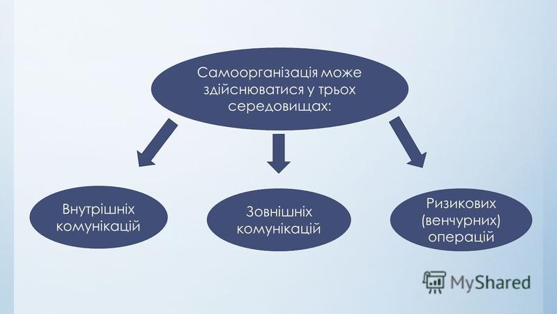 Самоорганізація може здійснюватися у трьох середовищах: Ризикових (венчурних) операцій Зовнішніх комунікацій Внутрішніх комунікацій