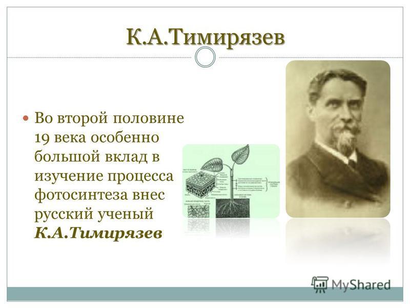 К.А.Тимирязев Во второй половине 19 века особенно большой вклад в изучение процесса фотосинтеза внес русский ученый К.А.Тимирязев