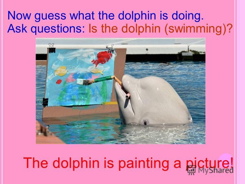 The dolphin is painting a picture! Now guess what the dolphin is doing. Ask questions: Is the dolphin (swimming)?