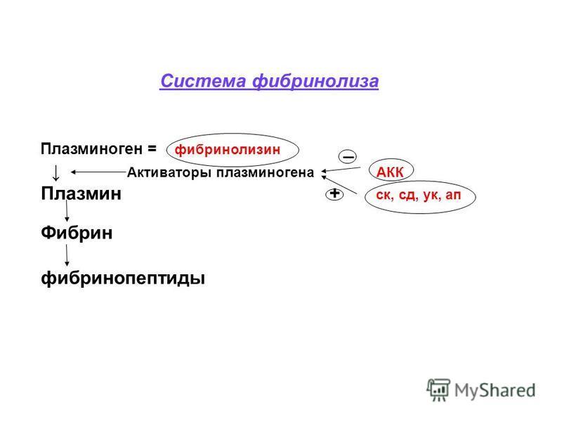 Система фибринолиза Плазминоген = фибринолизин _ Активаторы плазминогена АКК Плазмин + ск, сд, ук, ап Фибрин фибринопептиды