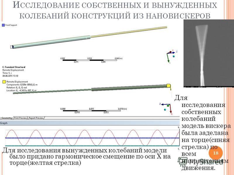 И ССЛЕДОВАНИЕ СОБСТВЕННЫХ И ВЫНУЖДЕННЫХ КОЛЕБАНИЙ КОНСТРУКЦИЙ ИЗ НАНОВИСКЕРОВ 18 Для исследования собственных колебаний модель вискера была заделана на торце(синяя стрелка) по всем направлениям движения. Для исследования вынужденных колебаний модели