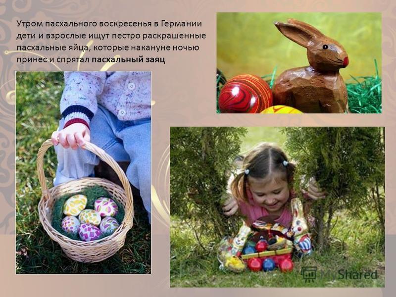 Утром пасхального воскресенья в Германии дети и взрослые ищут пестро раскрашенные пасхальные яйца, которые накануне ночью принес и спрятал пасхальный заяц