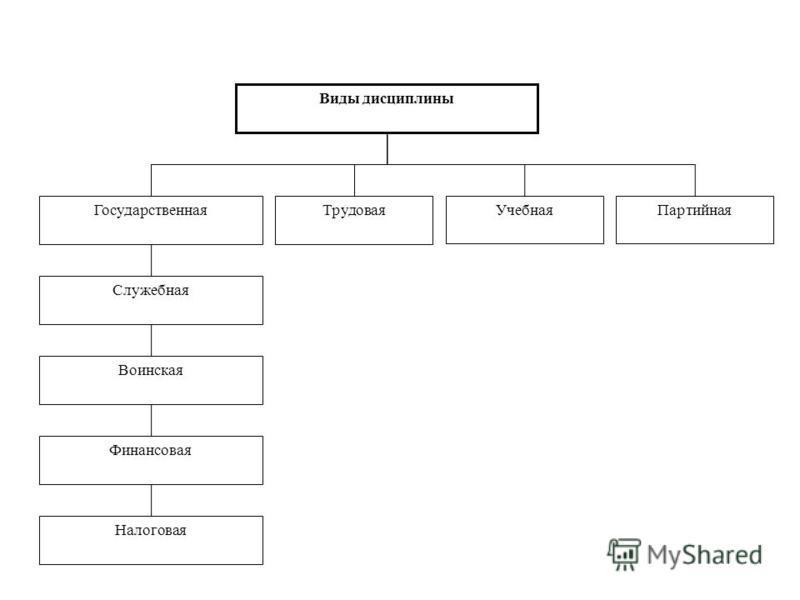 Виды дисциплины Воинская Трудовая УчебнаяПартийная Служебная Государственная Финансовая Налоговая