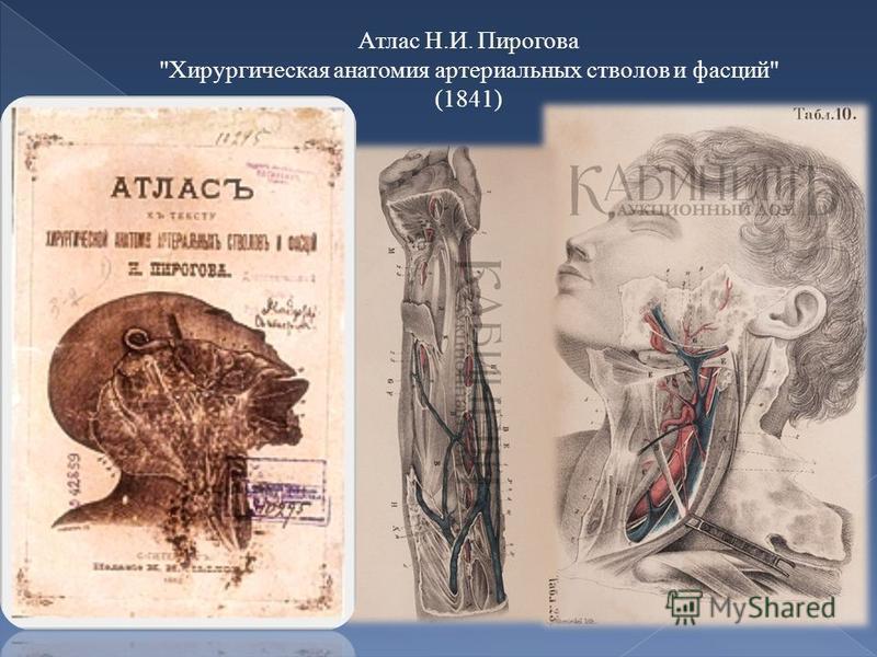 Атлас Н.И. Пирогова Хирургическая анатомия артериальных стволов и фасций (1841)