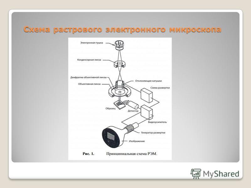 Схема растрового электронного микроскопа