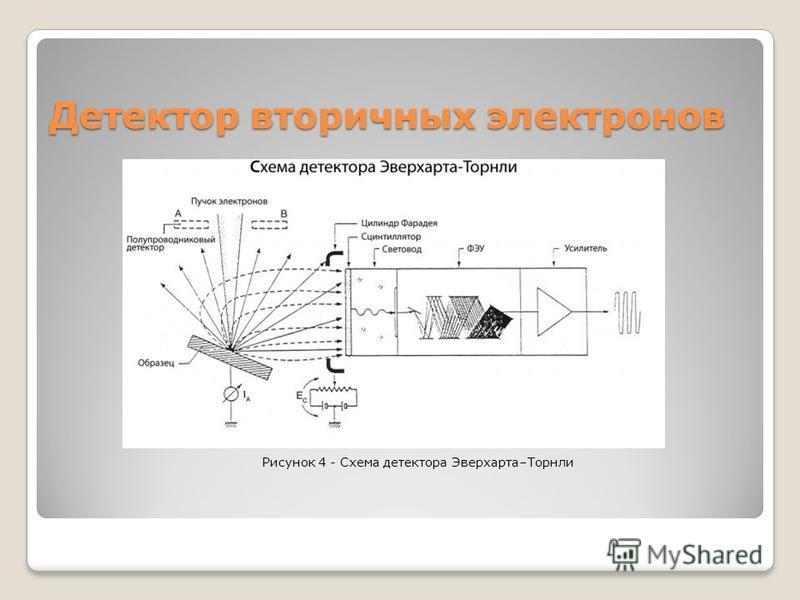 Детектор вторичных электронов Рисунок 4 - Схема детектора Эверхарта–Торнли