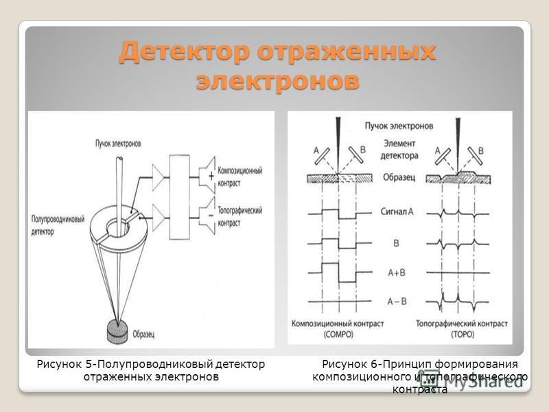 Детектор отраженных электронов Рисунок 5-Полупроводниковый детектор отраженных электронов Рисунок 6-Принцип формирования композиционного и топографического контраста