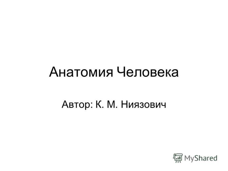 Анатомия Человека Автор: К. М. Ниязович