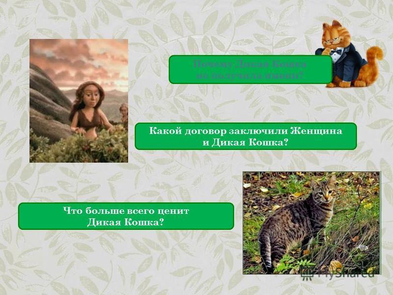 Почему Дикая Кошка не получила имени? Какой договор заключили Женщина и Дикая Кошка? Что больше всего ценит Дикая Кошка?
