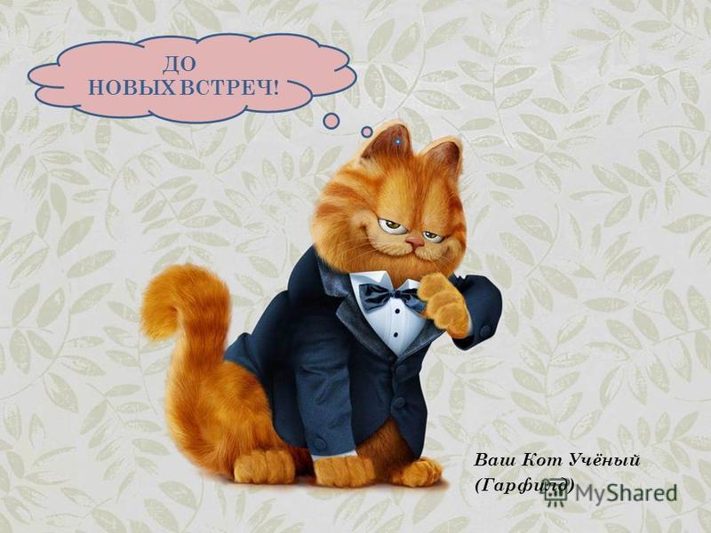Ваш Кот Учёный (Гарфилд) ДО НОВЫХ ВСТРЕЧ!