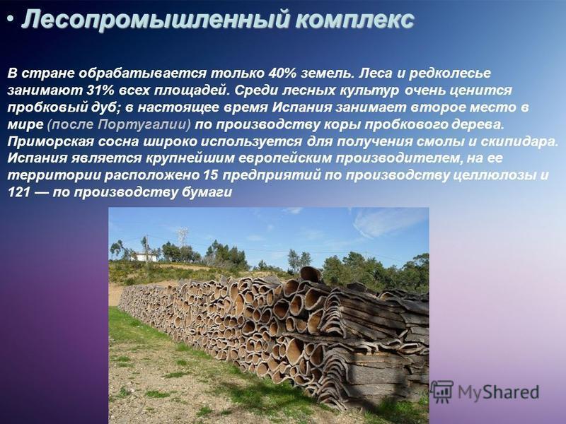 Лесопромышленный комплекс В стране обрабатывается только 40% земель. Леса и редколесье занимают 31% всех площадей. Среди лесных культур очень ценится пробковый дуб; в настоящее время Испания занимает второе место в мире (после Португалии) по производ
