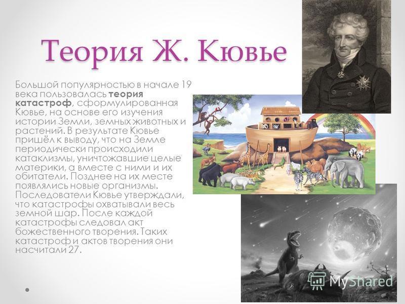 Теория Ж. Кювье Большой популярностью в начале 19 века пользовалась теория катастроф, сформулированная Кювье, на основе его изучения истории Земли, земных животных и растений. В результате Кювье пришёл к выводу, что на Земле периодически происходили