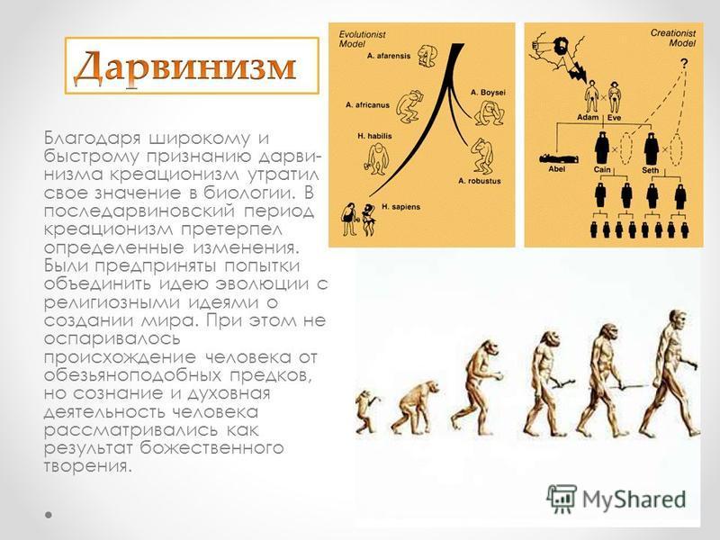 Благодаря широкому и быстрому признанию дарви низма креационизм утратил свое значение в биологии. В последарвиновский период креационизм претерпел определенные изменения. Были предприняты попытки объединить идею эволюции с религиозными идеями о со