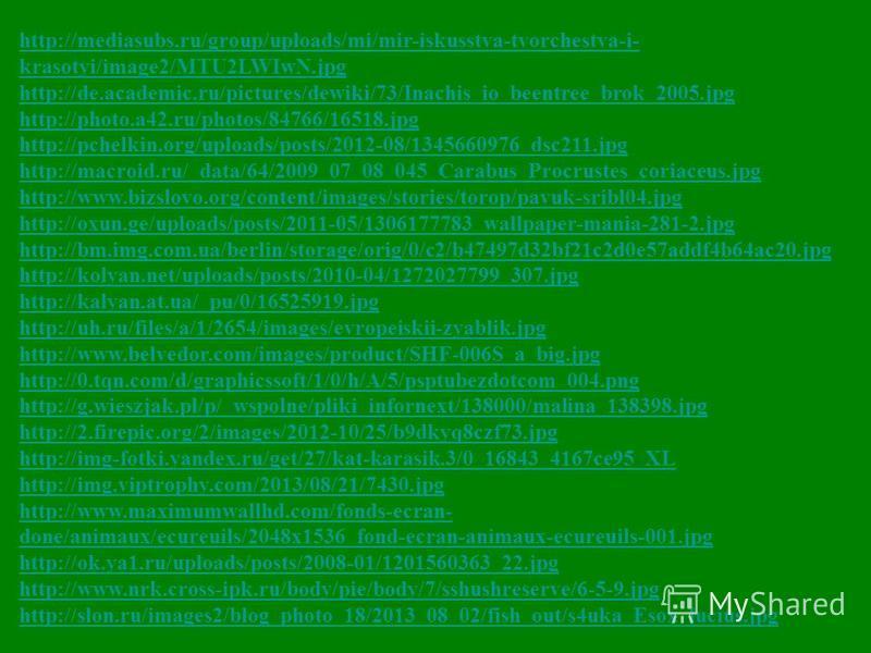 http://mediasubs.ru/group/uploads/mi/mir-iskusstva-tvorchestva-i- krasotyi/image2/MTU2LWIwN.jpg http://de.academic.ru/pictures/dewiki/73/Inachis_io_beentree_brok_2005. jpg http://photo.a42.ru/photos/84766/16518. jpg http://pchelkin.org/uploads/posts/