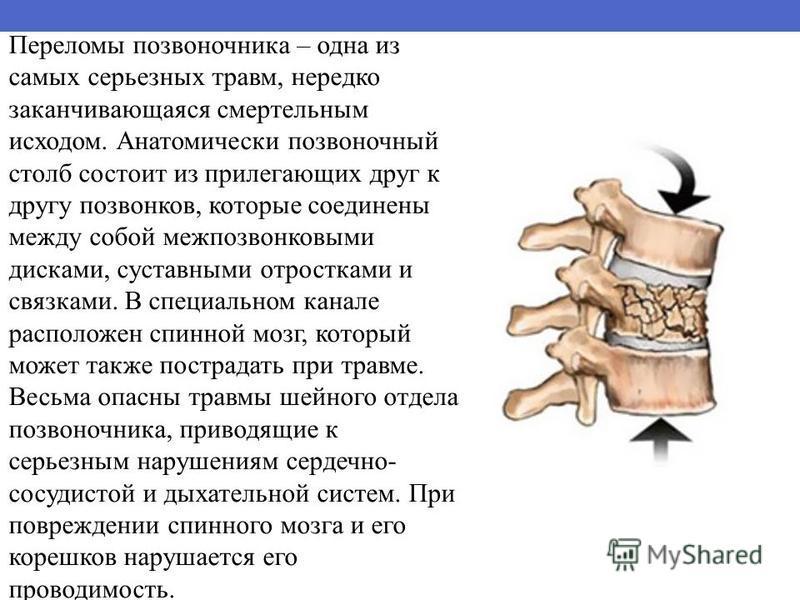 Переломы позвоночника – одна из самых серьезных травм, нередко заканчивающаяся смертельным исходом. Анатомически позвоночный столб состоит из прилегающих друг к другу позвонков, которые соединены между собой межпозвонковыми дисками, суставными отрост