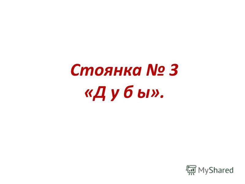 Стоянка 3 «Д у б ы».
