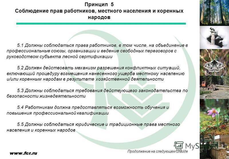 5.1 Должны соблюдаться права работников, в том числе, на объединение в профессиональные союзы, организации и ведение свободных переговоров с руководством субъекта лесной сертификации 5.2 Должен действовать механизм разрешения конфликтных ситуаций, вк