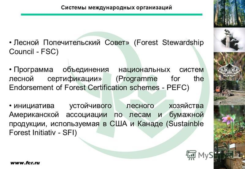 Лесной Попечительский Совет» (Forest Stewardship Council - FSC) Программа объединения национальных систем лесной сертификации» (Programme for the Endorsement of Forest Certification schemes - PEFC) инициатива устойчивого лесного хозяйства Американско