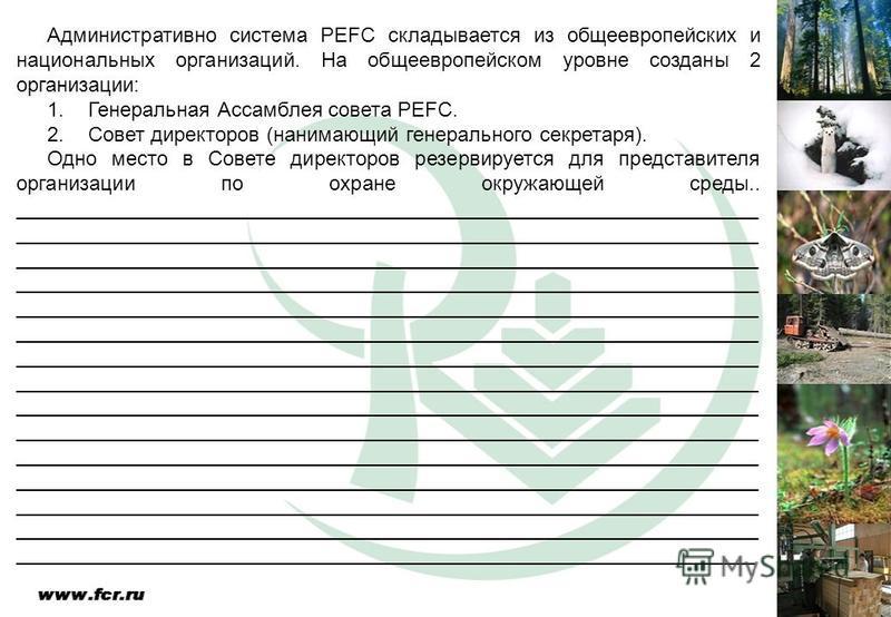 Административно система PEFC складывается из общеевропейских и национальных организаций. На общеевропейском уровне созданы 2 организации: 1. Генеральная Ассамблея совета PEFC. 2. Совет директоров (нанимающий генерального секретаря). Одно место в Сове