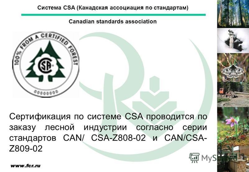 Сертификация по системе CSA проводится по заказу лесной индустрии согласно серии стандартов CAN/ CSA-Z808-02 и CAN/CSA- Z809-02 Система CSA (Канадская ассоциация по стандартам) Canadian standards association