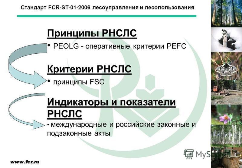 Стандарт FCR-ST-01-2006 лесоуправления и лесопользования Принципы РНСЛС PEOLG - оперативные критерии PEFC Критерии РНСЛС принципы FSC Индикаторы и показатели РНСЛС международные и российские законные и подзаконные акты