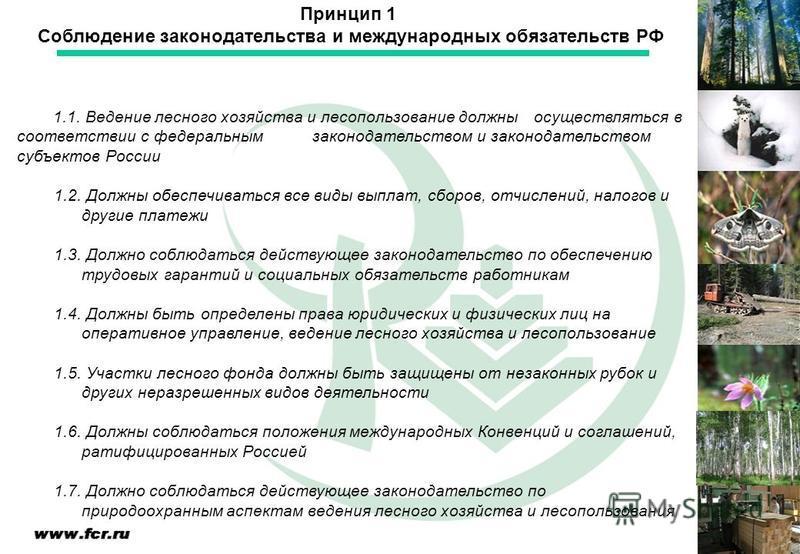 1.1. Ведение лесного хозяйства и лесопользование должны осуществляться в соответствии с федеральным законодательством и законодательством субъектов России 1.2. Должны обеспечиваться все виды выплат, сборов, отчислений, налогов и другие платежи 1.3. Д
