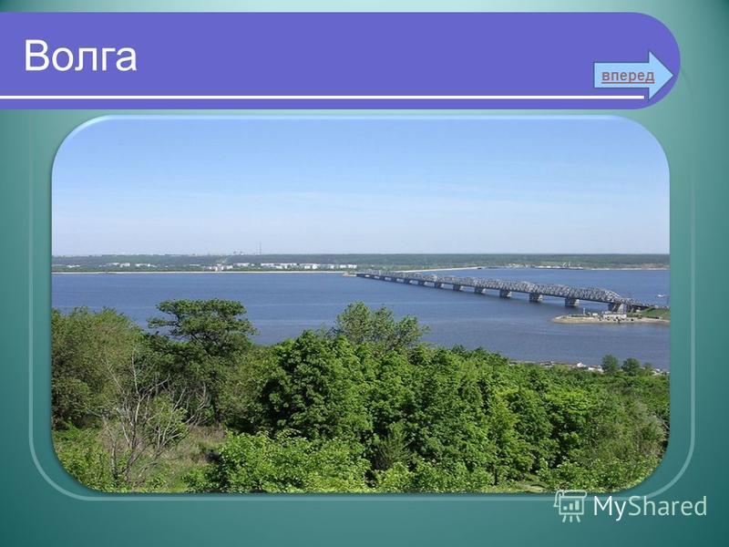Волга вперед