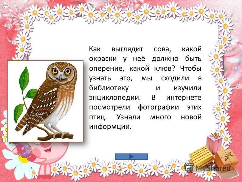 Как выглядит сова, какой окраски у неё должно быть оперение, какой клюв? Чтобы узнать это, мы сходили в библиотеку и изучили энциклопедии. В интернете посмотрели фотографии этих птиц. Узнали много новой информации.