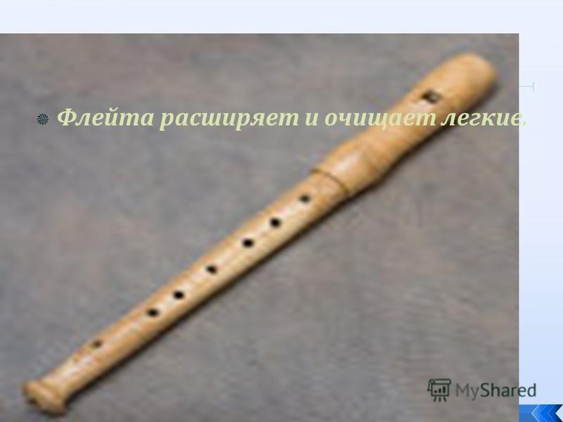 Флейта расширяет и очищает легкие.