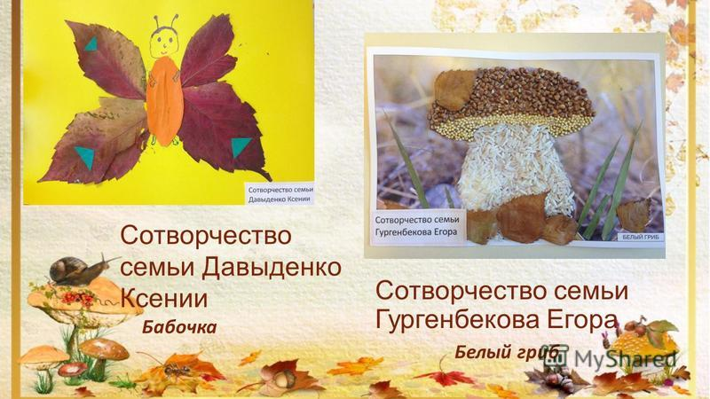 Сотворчество семьи Гургенбекова Егора Бабочка Сотворчество семьи Давыденко Ксении Белый гриб