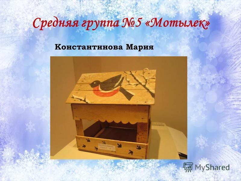 Средняя группа 5 «Мотылек» Константинова Мария
