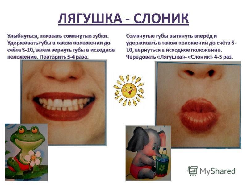 ЛЯГУШКА - СЛОНИК Улыбнуться, показать сомкнутые зубки. Удерживать губы в таком положении до счёта 5-10, затем вернуть губы в исходное положение. Повторить 3-4 раза. Сомкнутые губы вытянуть вперёд и удерживать в таком положении до счёта 5- 10, вернуть