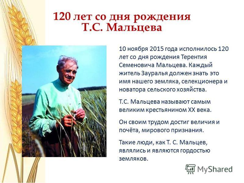 120 лет со дня рождения Т.С. Мальцева 10 ноября 2015 года исполнилось 120 лет со дня рождения Терентия Семеновича Мальцева. Каждый житель Зауралья должен знать это имя нашего земляка, селекционера и новатора сельского хозяйства. Т.С. Мальцева называю