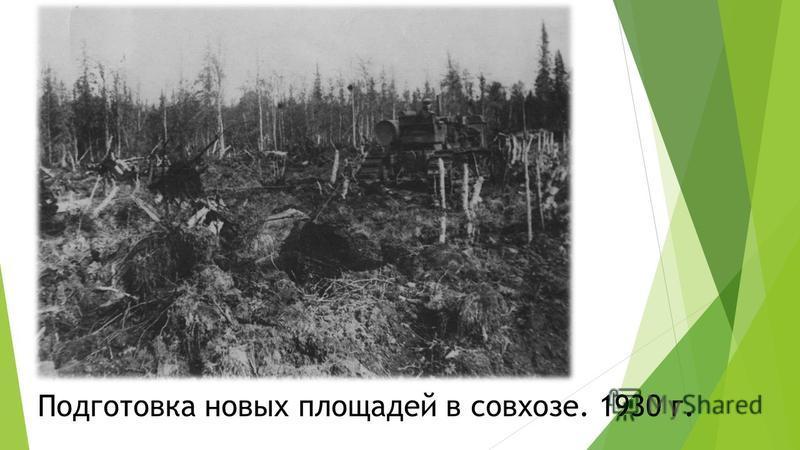 Подготовка новых площадей в совхозе. 1930 г.