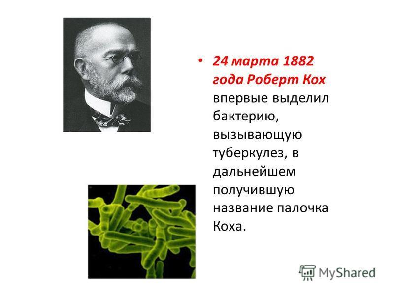 24 марта 1882 года Роберт Кох впервые выделил бактерию, вызывающую туберкулез, в дальнейшем получившую название палочка Коха.