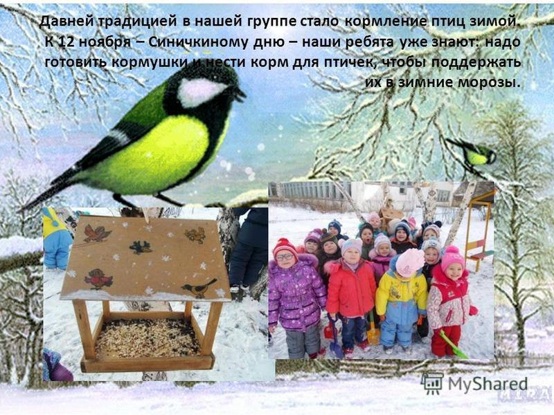 Давней традицией в нашей группе стало кормление птиц зимой. К 12 ноября – Синичкиному дню – наши ребята уже знают: надо готовить кормушки и нести корм для птичек, чтобы поддержать их в зимние морозы.