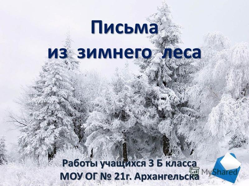 Письма из зимнего леса Работы учащихся 3 Б класса МОУ ОГ 21 г. Архангельска